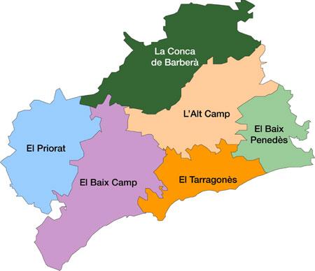 Els consells comarcals del Camp, en contra de la supressió de municipis