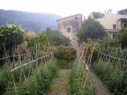 Els pagesos de la Vall del Francolí començaran a patrullar a les nits si no s'aturen els robatoris en deu dies