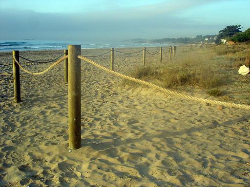 La Platja Llarga compta amb un nou tram de dunes protegides