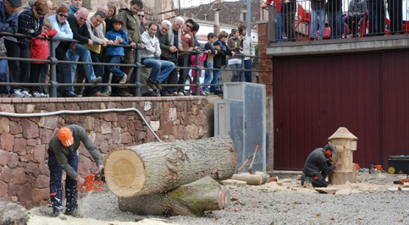 La Festa del Bosc tanca l'octubre a Prades