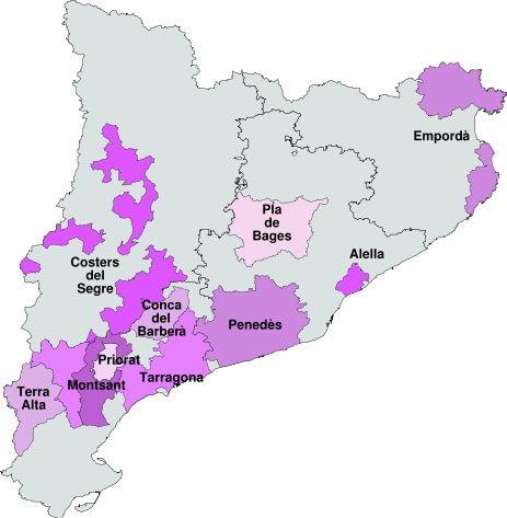 Pluja de reconeixements a les DO del Camp  de Tarragona